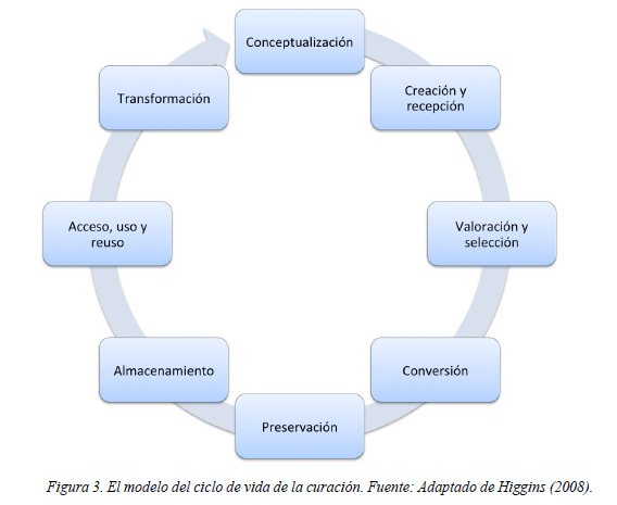 ciclo-de-la-curacion